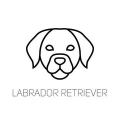 Labrador linear face icon. Isolated outline dog head vector