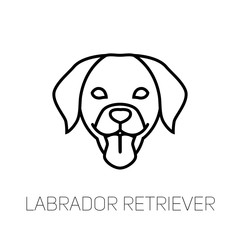 Labrador Retriever tongue out. Dog breed linear face icon. Isolated vector line dog head