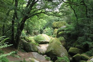 Le Ménage de la Vièrge, Wald von Huelgoat, Bretagne