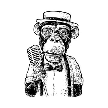Monkey dressed hat, shirt, bow tie holding microphone. Engraving