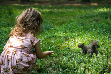 Young female child pet a curios squirrel in the underwood