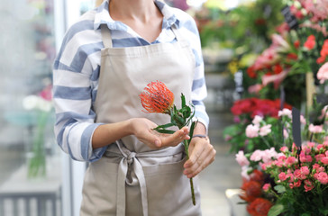 Female florist holding beautiful flower in shop