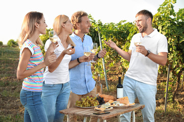 Friends holding glasses of wine and having fun on vineyard picnic