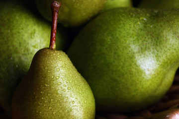 Ripe green pears with water drops as background, closeup