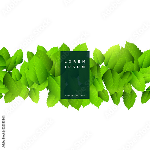 Abstract Green Leaves Nature Background Stock Image And