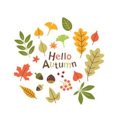 Autumn leaves illustration set