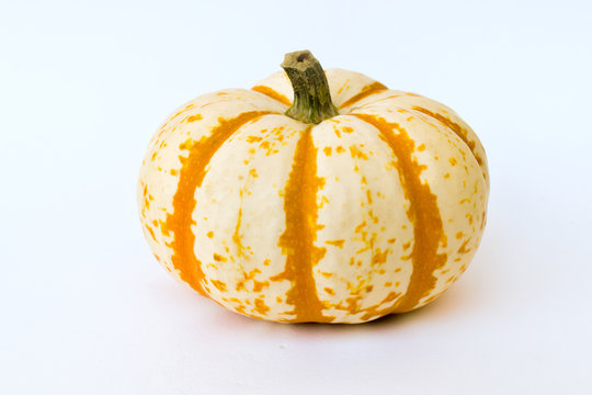Small pumpkin on a white background