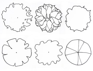 top view set graphic trees.for architecture and landscape design. for layout of the garden.