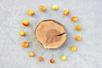 Apple tree stump with copy space surrounded by cherry apples