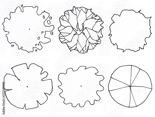 Top View Set Graphic Trees For Architecture And Landscape Design