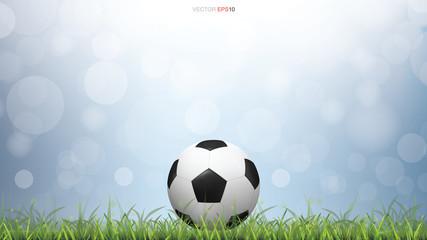 Soccer football ball on green grass field with light blurred bokeh background. Vector.