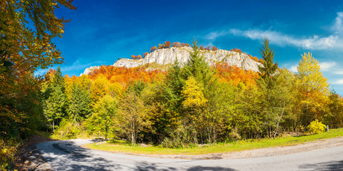 panorama of gorgeous serpentine in autumn forest. huge rocky formation on the hill above the path. beautiful nature and weather. colorful foliage