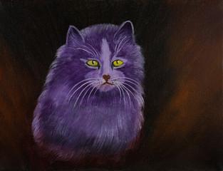 Eine lila Angora Katze vor braunem Hintergrund