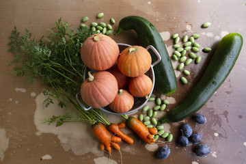 Close-up of freshly harvested organic pumpkins, zucchinis, carrots, pickles and plums on a table with flaking paint.