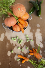 Close-up of freshly harvested organic pumpkins, zucchinis, carrots and pickles on a table with flaking paint.