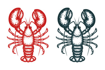 Lobster vector illustration. Crayfish on a white background. Vector seafood illustration
