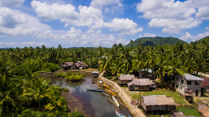 water village mangroves palm trees serpentines jungle siargao philippines
