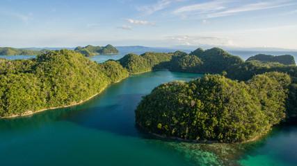 forrest islands aerial view bird super blue lagune siargao philippines horizon ocean