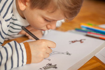 Boy drawing with color pencils