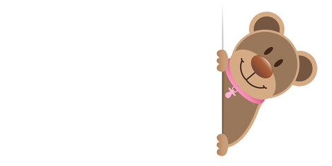 Teddy Pacifier Girl Banner Right