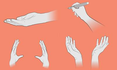 Dessin de gestes de mains sur fond modifiable. Ressources de mains vectorielles pour infographie