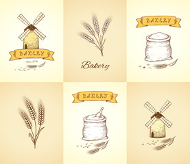 hand drawn bakery and wheat isolated icons set