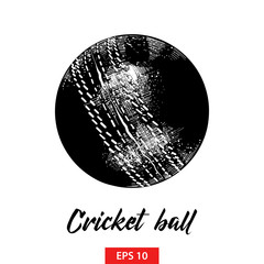 Vector engraved style illustration for posters, decoration and print. Hand drawn sketch of cricket ball in black isolated on white background. Detailed vintage etching style drawing.
