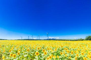 エネルギー・エコロジー・環境イメージ