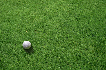 Top View of White Golf Ball Lying on Green Grass