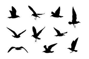 Silhouetten von 10 Möwen, Vektorgrafik, Vogel Icons