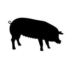 Black pig silhouette.