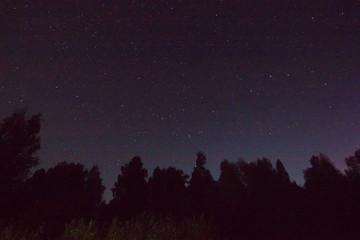 beautiful warm starry summer night
