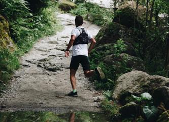 Man trail runner running on forest trail