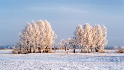 Zima na Podlasiu, Polska