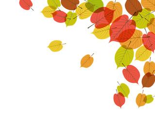 秋の紅葉背景