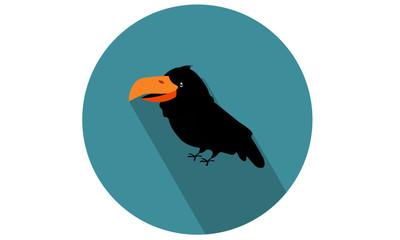 Crow - Raven Vector Flat color icon