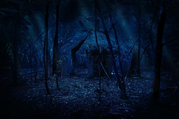 Wall Mural - Ruins in night forest