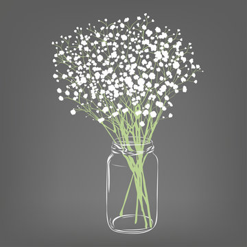 White flowers bouquet. Gypsophila flowers. Transparent clear glass jar. Grey background. Vector Illustration.