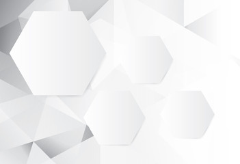 abstract gray and white Hexagon geometric background