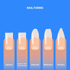 Set of nail forms. Kinds of nails. Vector illustration.