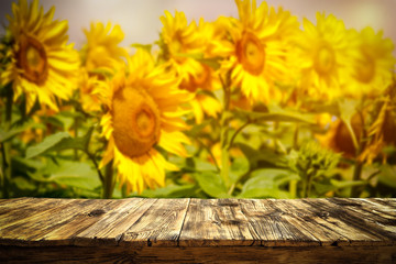 beautiful sunflowers and an old wooden table