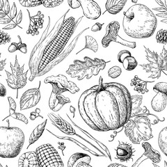 Harvest products seamless pattern. Hand drawn vintage vector background with pumpkin, apple, corn, wheat, muchroom.
