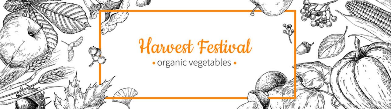 Harvest festival banner. Hand drawn vintage vector frame with vegetables, fruits, leaves. Farm Market