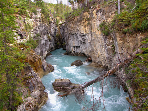 Spectacular view on the turquoise glacial water of Marble Canyon, Kootenay National Park in the Canadian Rockies of British Columbia, Canada.