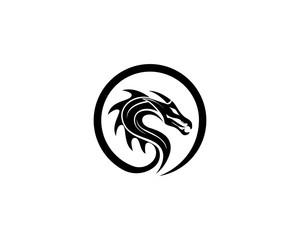 dragon  logo vector illustration