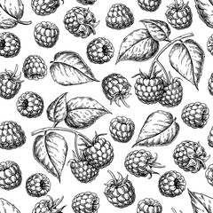 Raspberry seamless pattern. Vector drawing. Isolated berry branch sketch on white background.
