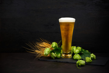Fotobehang Bier / Cider Glass of beer with green hops and wheat ears on dark wooden table. Still life