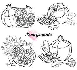 Vector set of outline Pomegranate half and whole fruit, ornate flower, leaf and seed in black isolated on white background. Drawing of ripe Pomegranate in contour for summer design and coloring book.