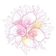 Vector round bouquet with outline Calla lily flower or Zantedeschia, bud and ornate leaf in pastel pink isolated on white background. Contour tropical calla flower bunch for elegance summer design.