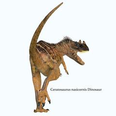 Ceratosaurus Dinosaur Tail with Font